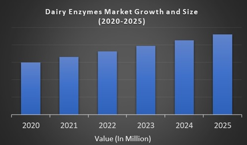 Dairy Enzymes Market