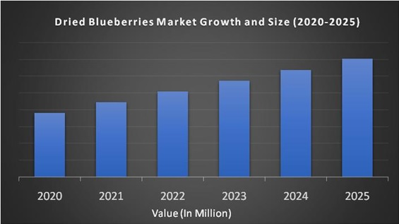 Dried Blueberries Market